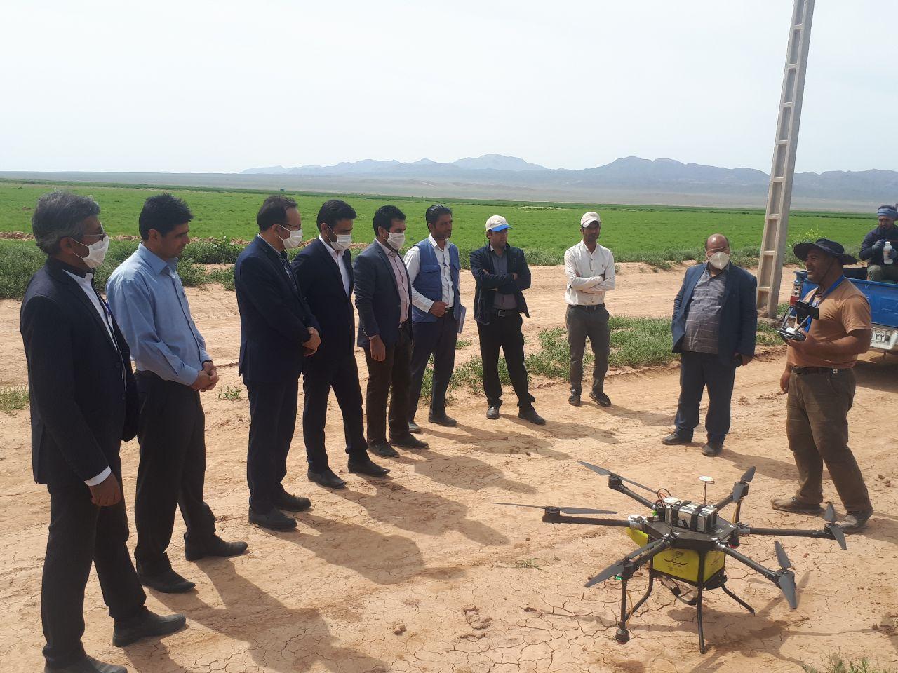 استفاده از پهپاد برای کنترل آفات در مزارع شهرستان خواف