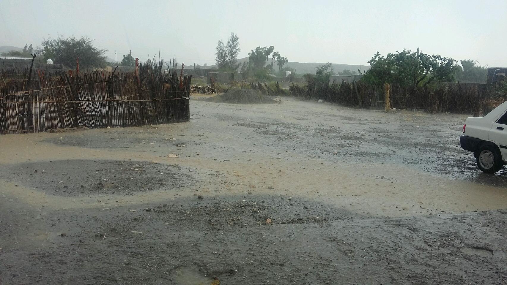 بارش باران وتگرگ در منطقه پوراحمدی