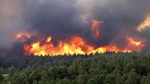 آماده باش تیمهای مقابله با آتش سوزیهای احتمالی