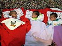 پرداخت مستمری به خانوادههای دارای فرزند سه قلو
