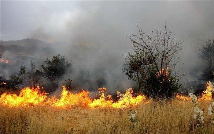 مهار آتشسوزی مراتع علیآباد نیزار قم