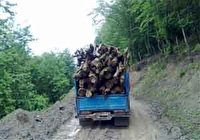 کشف ۲ تن چوب قاچاق در سوادکوه شمالی