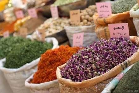 گیاهان دارویی، ذخایر و گنجینههای ژنتیکی