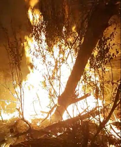 حادثه آتش سوزی در طزرجان یزد