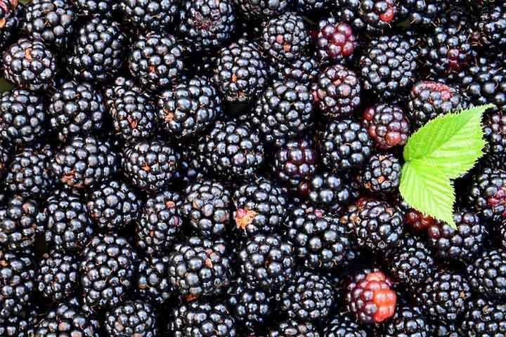 سالمترین میوههای جهان کدامند