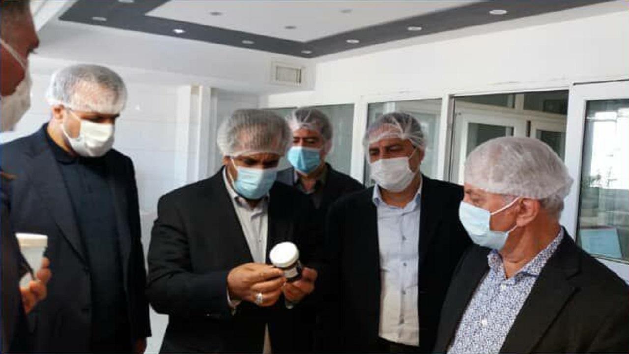 بازدید استاندار قزوین از چند واحد تولیدی