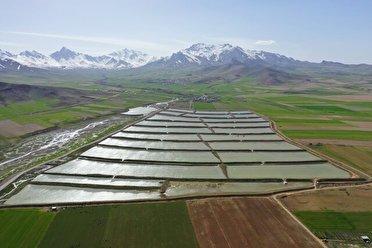 ورود سالانه یک میلیارد مترمکعب آب به آبخوانهای کردستان