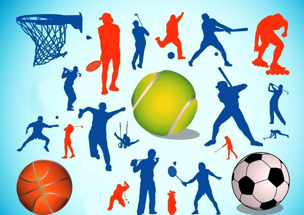 چند خبر ورزشی از استان قزوین