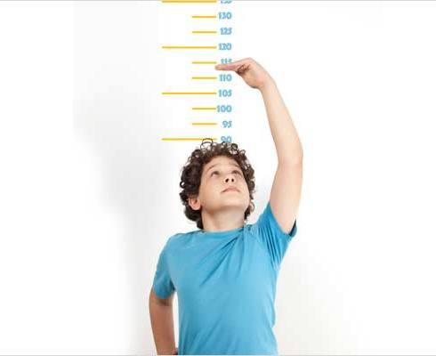 با کدام غذاها قد بلند میشویم؟