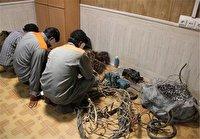 سارقان کابل برق و مخابرات در دام پلیس