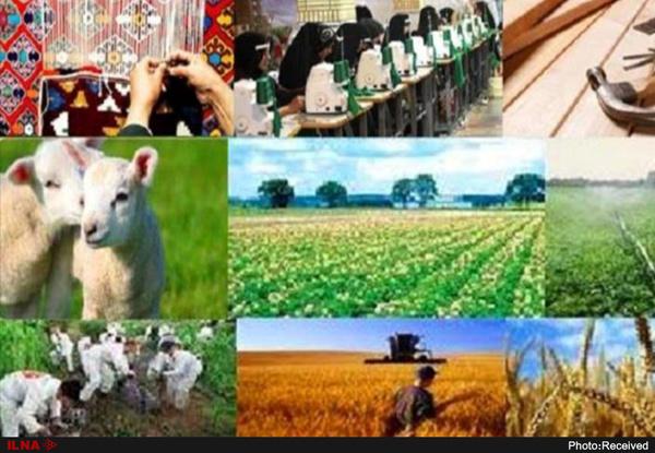 پرداخت ۴۰۰ میلیارد تومان تسهیلات اشتغالزایی روستایی در استان اردبیل