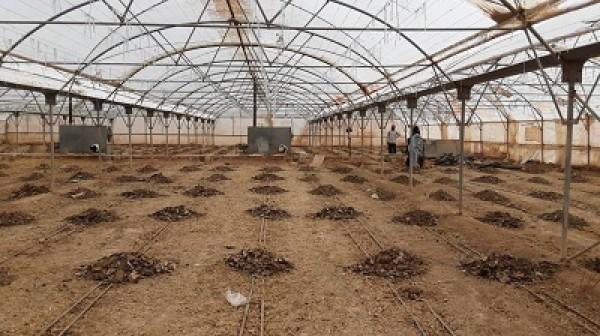 شناسایی و پلمپ دو حلقه چاه غیرمجاز در یزد