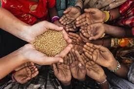 تشدید بحران غذایی در نیجر