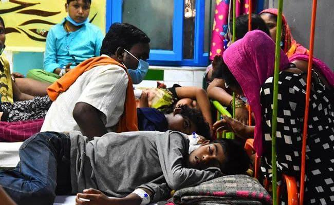 دینگو ۶۰ هندی را به کام مرگ کشاند