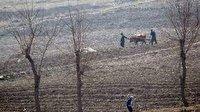 هشدار درباره خطر قحطی در کره شمالی