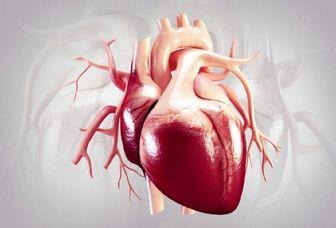 علت تپش کوبنده قلب چیست؟