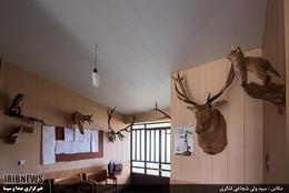 پارک-ملی-کیاسر---مازندران-