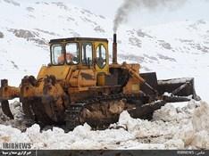 thm 3115861 246 - بارش برف در سپیدان + عکس
