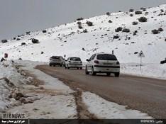 thm 3115866 728 - بارش برف در سپیدان + عکس