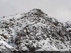 thm 3115867 326 - بارش برف در سپیدان + عکس