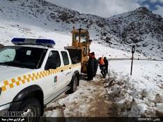 thm 3115868 387 - بارش برف در سپیدان + عکس